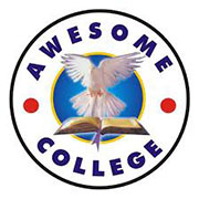 Awesome Collegeschools in Ilupeju, Lagos in Ilupeju/Oshodi/Ajao-Est
